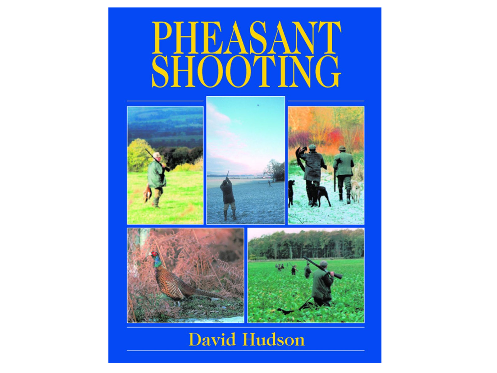 Pheasant Shooting